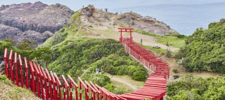 Japan welcomed 24.04 million visitors in 2016, up 2.4 fold over three years